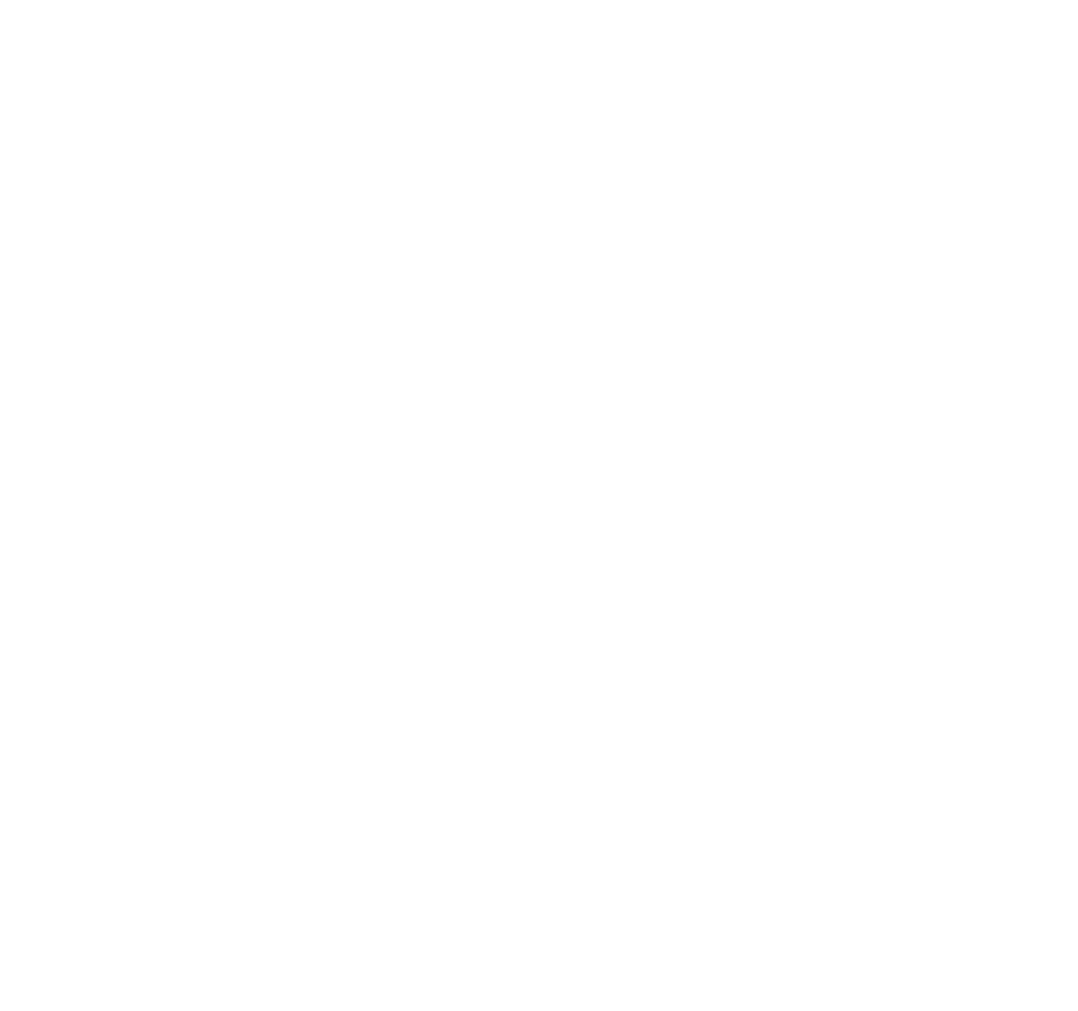 Spin Vision